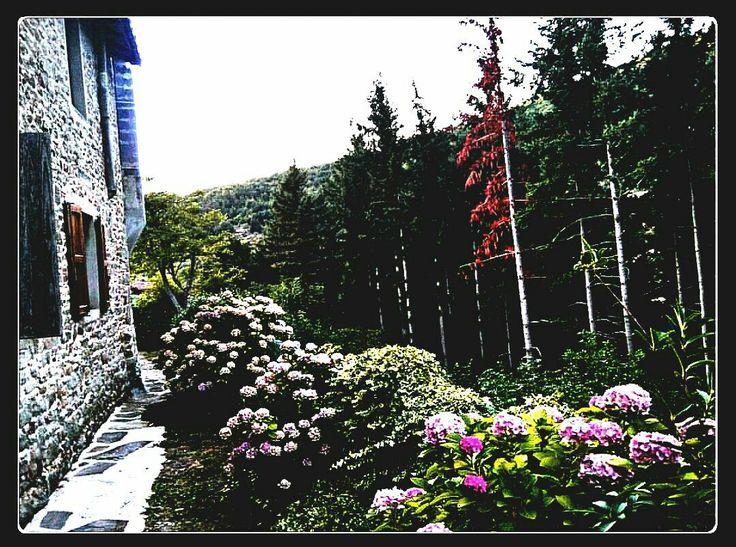 ARCIMBOLDA ~   CLICK FOR DETAIL   #Italy #italia toscana #summertime #paradise #lamole #campagna #cibo #foodandwine #bright #colors #shimer #glow #natur #trees #green #chianty #story #history #sundayfunday #rinascente #beautifulday #lofestyle #blogger #ibelieveicanfly #flowers #sunny #love #hope