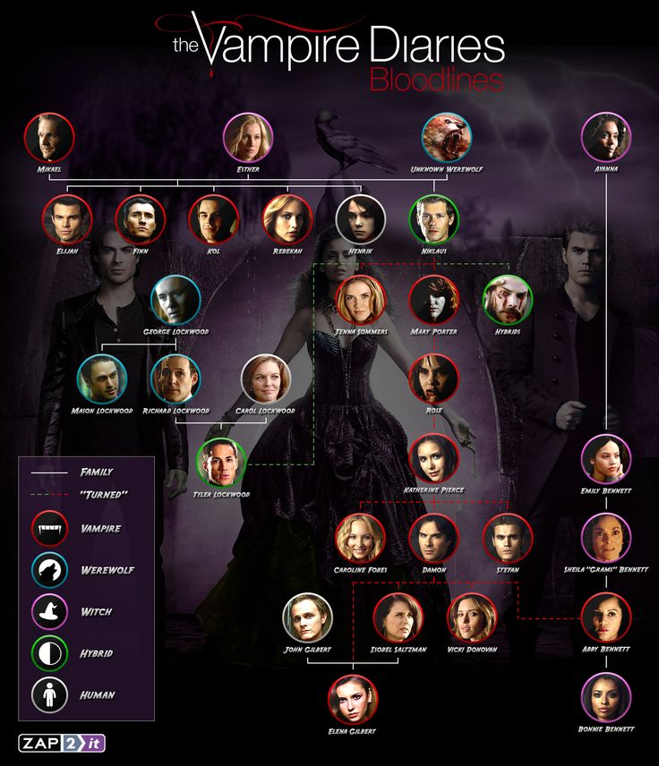Get to know 'The Vampire Diaries' family tree/bloodlines with Zap2it's handy infographic @The CW