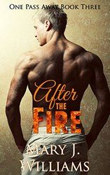 Wow. We can't take our eyes of of this fantastic cover. Read more about After the Fire by author Mary J. Williams!