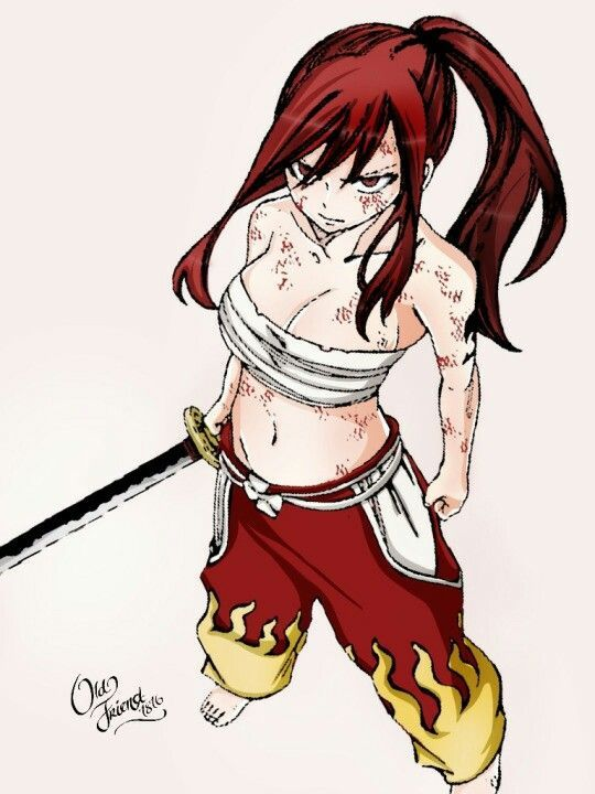 Fairy Tail Wall Scroll Erza Samurai Requip Fight ファイト