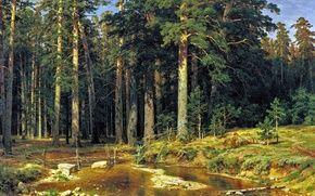 Обои Шишкин, картина, Корабельный, лес