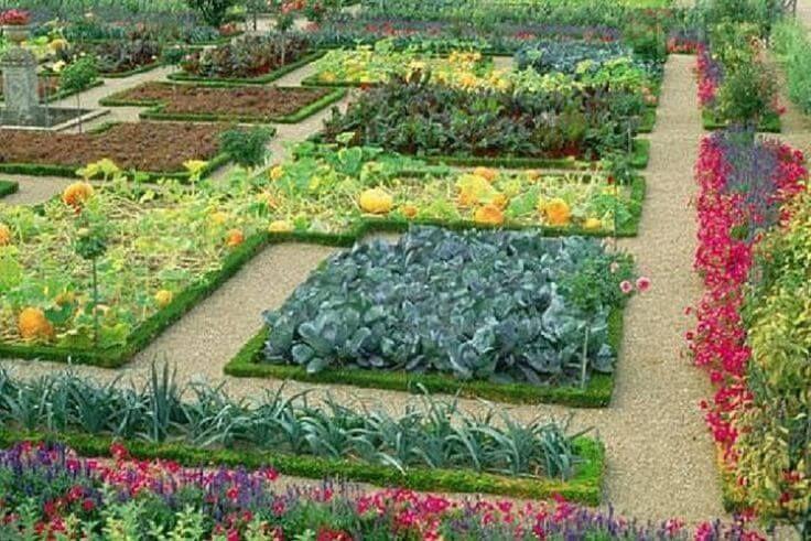 Французский огород: неповторимый шарм вашего участка