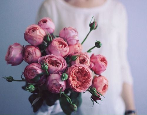 """""""Flowers always make people better, happier, and more helpful; they are sunshine, food and medicine for the soul."""" -Luther Burbank"""