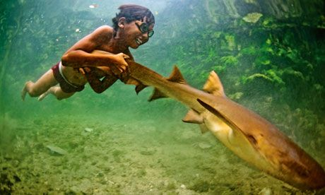 """""""Since diving is an everyday activity, the Bajau deliberately rupture their eardrums at an early age. """"You bleed from your ears and nose, and you have to spend a week lying down because of the dizziness,"""" says Imran Lahassan, of the community of Torosiaje in North Sulawesi, Indonesia. """"After that you can dive without pain."""" Unsurprisingly, most older Bajau are hard of hearing. When diving, they wear hand-carved wooden goggles with glass lenses, hunting with spear guns fashioned from boat…"""