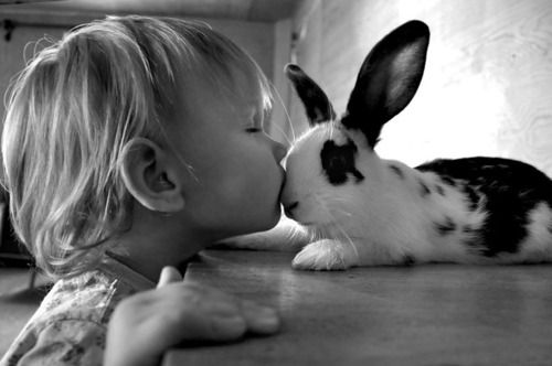 .bunnies do kiss.