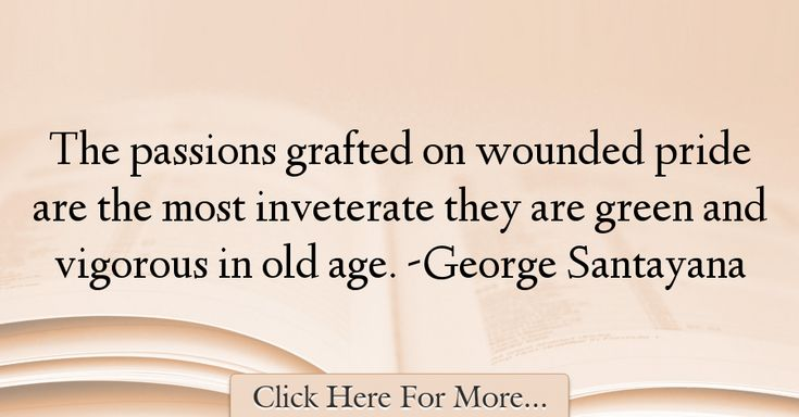 George Santayana Quotes About Age - 329