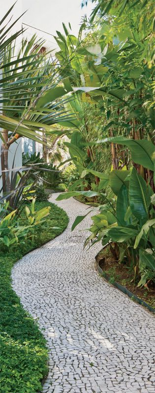 O corredor sinuoso com piso de mosaico, ideia do paisagista Koiti Mori, recebeu grama-amendoim (Arachis repens). Ela aprecia bastante sol ou meia-sombra e dispensa podas periódicas. No canteiro, à direita, estrelítzia-branca (Strelitzia augusta)