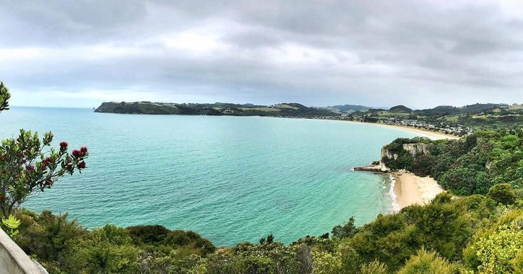 #lonelybay - - - #iphone #iphoneonly #iphoneography #picture  #pictures #beautiful #phototoday #pretty #view #color #day #weather #summer #nature #travel #travelgram #holiday #trees #plants #walk #nz #newzealand #whitianga #blue #green #sea #seaside #christmas