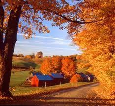 Autumn in New England: Autumn Photos, Country Roads, Autumn Leaves, Autumn Scenery, New England Fall, The Farms, Roads Trips, Fall Photos, Fall Seasons