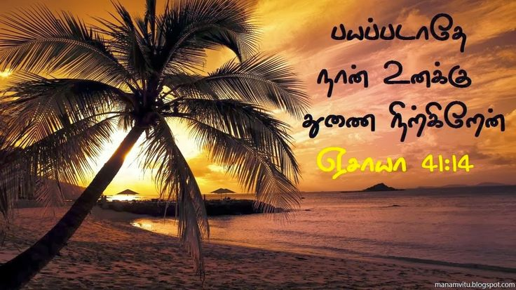 Download HD Christian Bible Verse Greetings Card & Wallpapers Free: Tamil Bible Verse Desktop Wallpapers Free