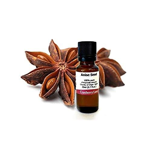 Anise Seed 100% Pure Essential Oil - 20ml