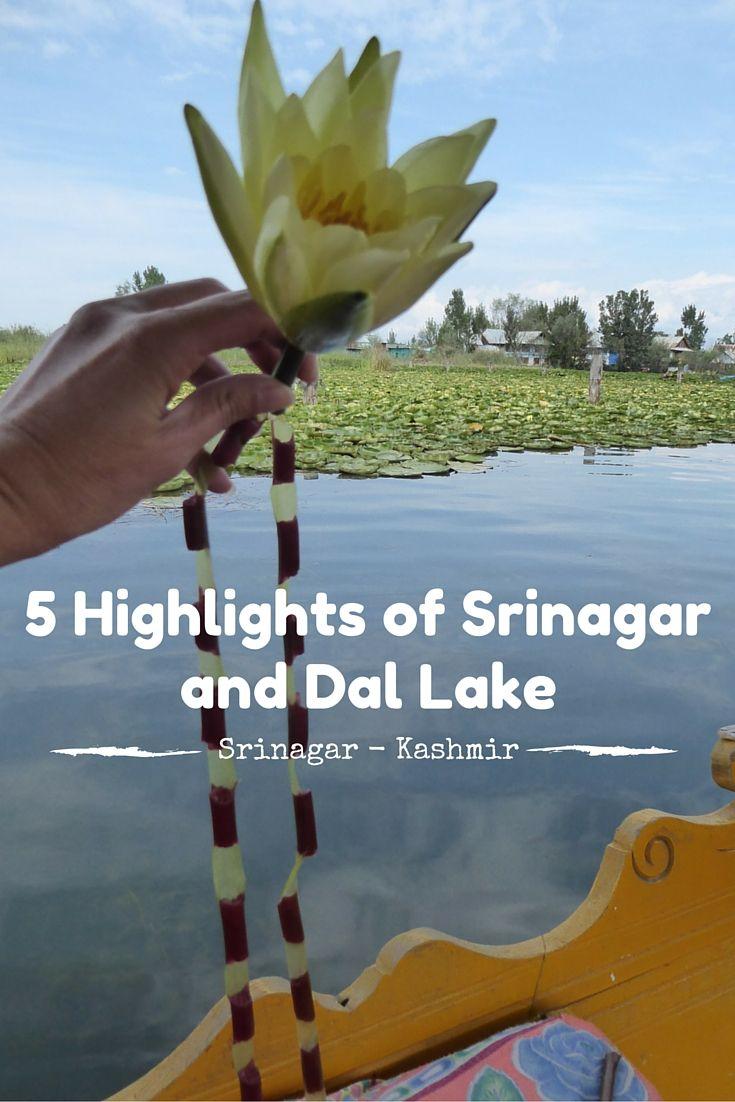 5 Highlights of Srinagar - Kashmir.... With my best: On Dal Lake with a Shikara!