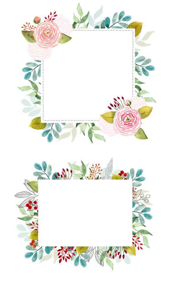 Cliparts De Fleurs à Peintes à Laquarelle Renoncules Et