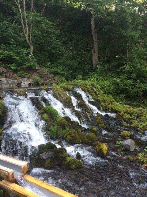 マイナスイオンに癒やされます。京極町のふきだし公園は羊蹄山の湧き水が出るおすすめスポットです。