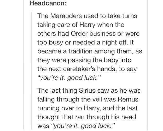 Harry Potter Tumbr Posts With Particular Attention To Marauder Era Harry Potter Universal Harry Potter Marauders Harry Potter Headcannons