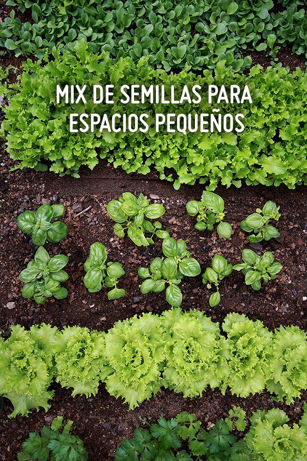 ¡Vamos a plantar! En tu propia huerta, puedes tener todas las semillas, sin importar el tamaño de ésta #Sodimac #Homecenter.