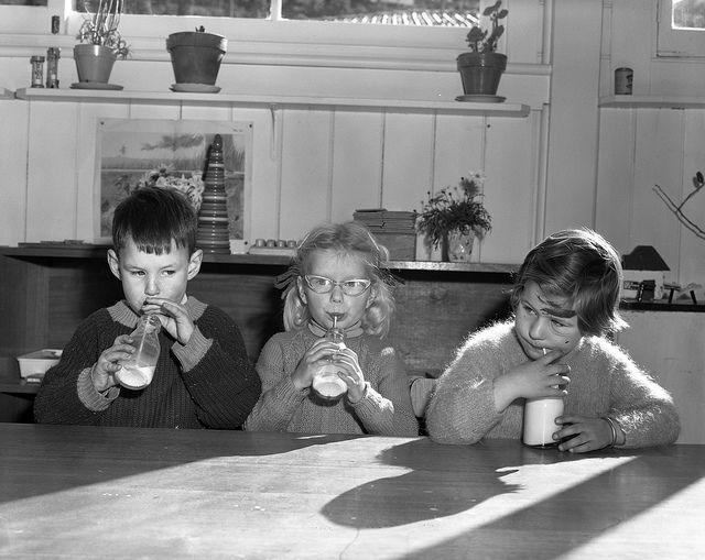 School children drinking milk Tasmania c 1951