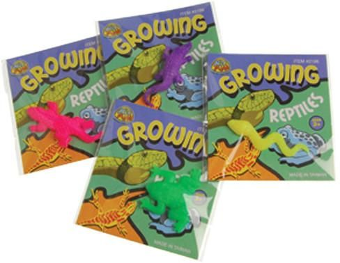 growing reptile novelty toys Case of 228