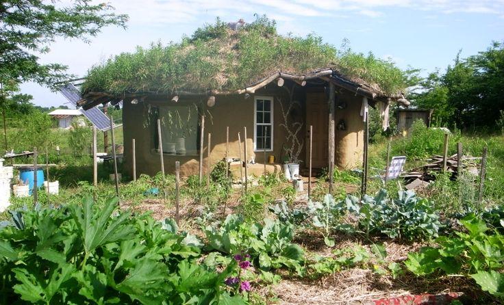 Como construir uma casa sustentável com R$ 8 milThe Greenest Post | The Greenest Post