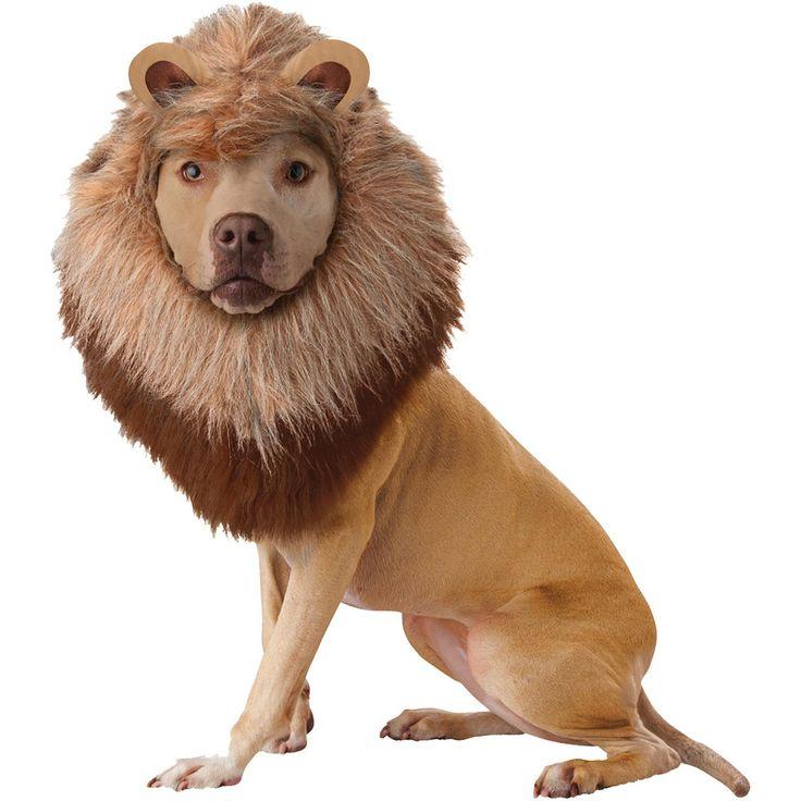 Pet Lion Large