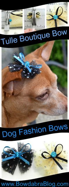 Tulle Boutique Dog Bow small dog fashion