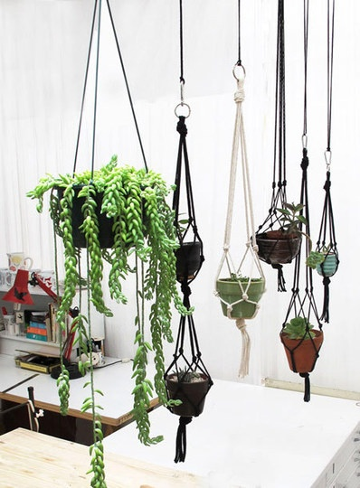 I've been making these exact plant hangers out of clothesline!  We're going to hang some plants in the carport this summer, but I think we might end up hanging a few in the big living room window as well...it'll be perfect for my small but growing spider plant!