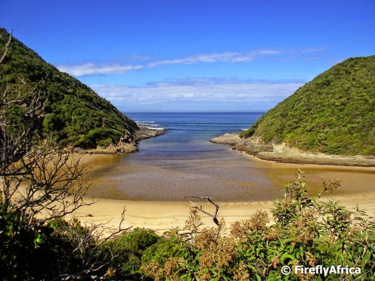 The Firefly Photo Files: A walk to Salt River Mouth at Natures Valley...