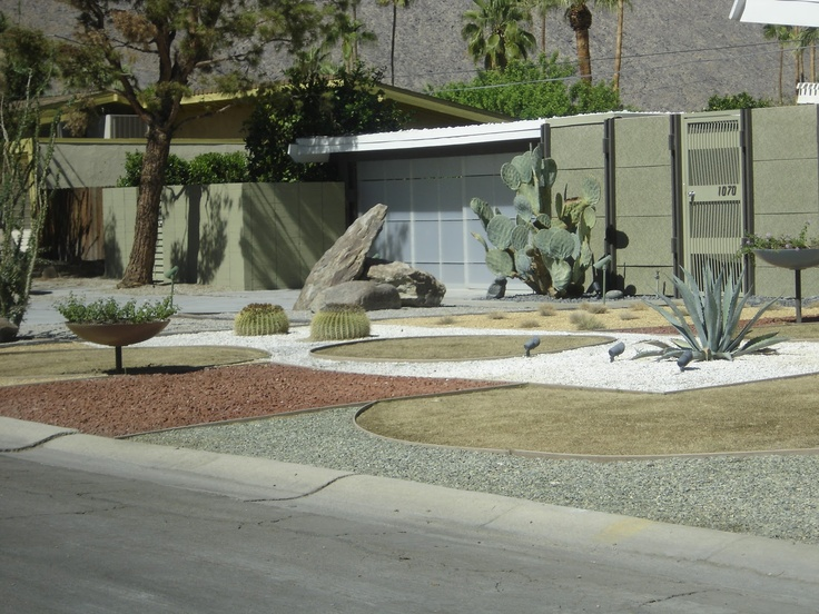 Awesome Xeriscape Mid Century Modern Backyard