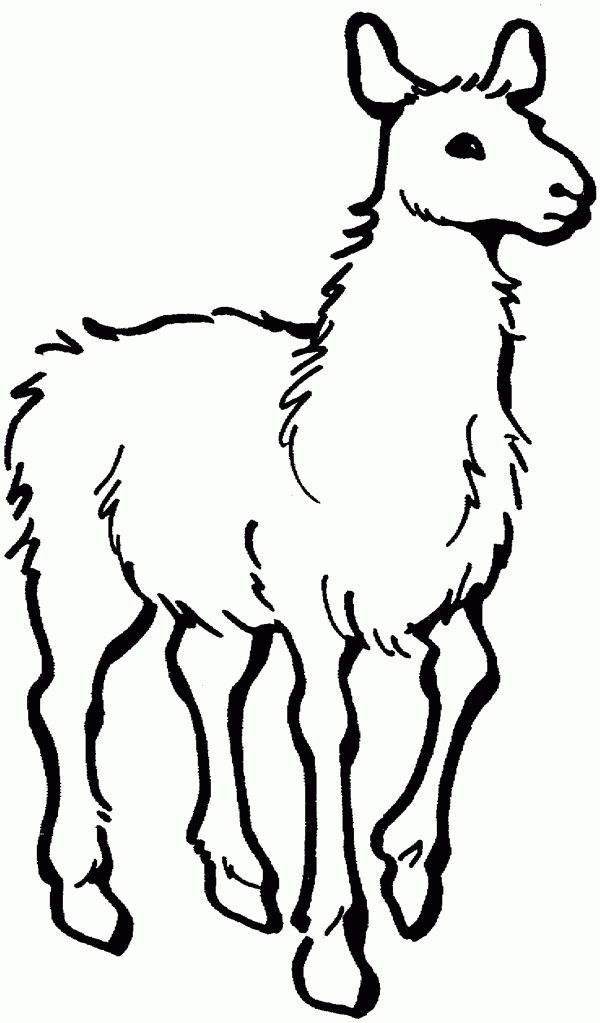 24 best Llama Llama images on Pinterest Llama llama red pajama - copy coloring pages to color free online
