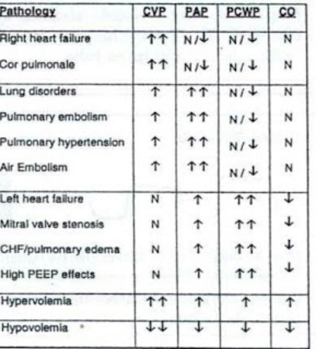 Hemodynamics. Cardiology Pinterest