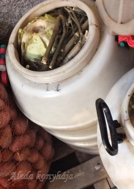 Aleda konyhája: A káposzta savanyítása