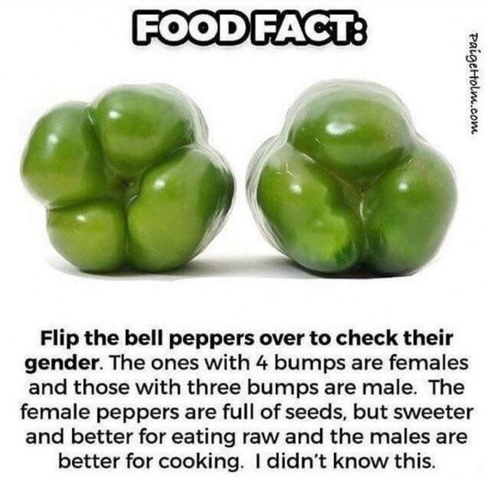 Don't assume the pepper's gender funny pics, funny gifs, funny videos, funny memes, funny jokes. LOL Pics app is for iOS, Android, iPhone, iPod, iPad, Tablet