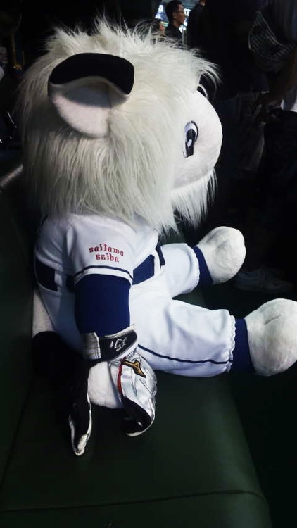 Saitama Seibu Lions mascot 'BenchLeo' watches today's game wearing Captain Takumi Kuriyama's batting glove - August 31, 2012.