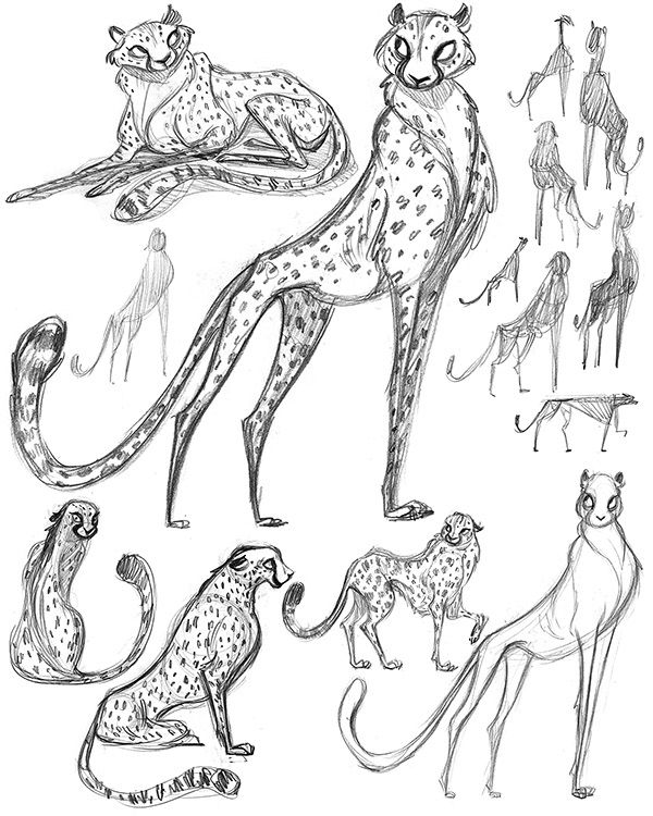 Cheetah Character Design Process on Behance