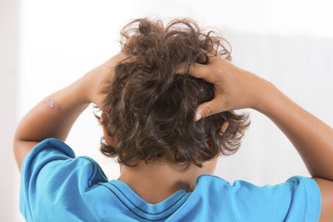 5 Things You Need to Know About…Head Lice