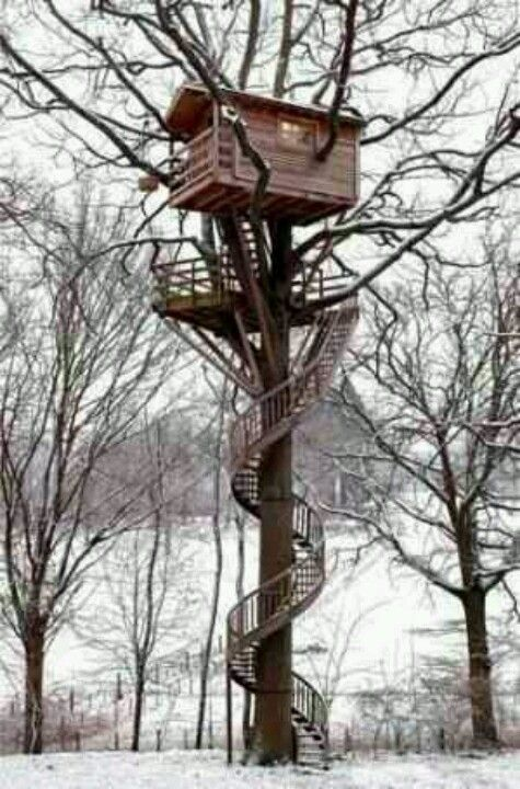 Awesome deer stand