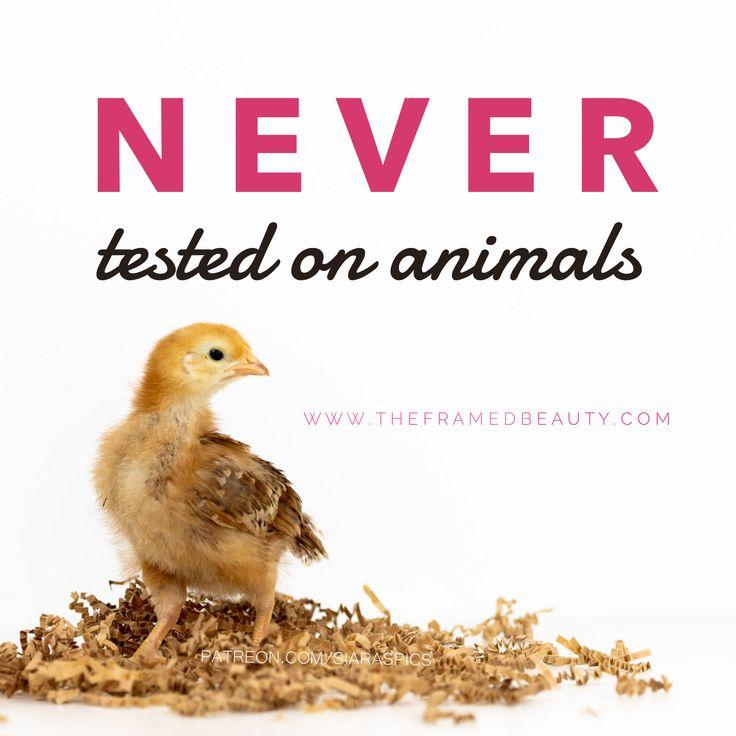 Crueltyfree skincare and cosmetics cruelty free skin