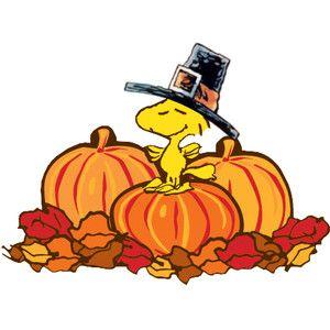 Woodstock on Pumpkins Peanuts Thanksgiving Cartoon Clipart I ...