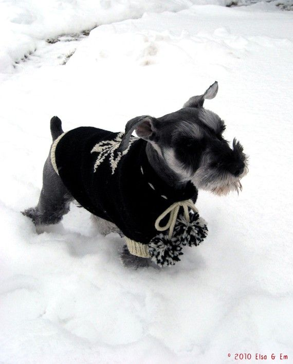 Snowbunny PomPom Dog Sweater (L)