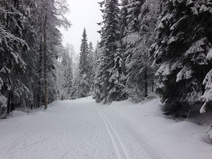 Empty tracks next to snowy Sognsvann