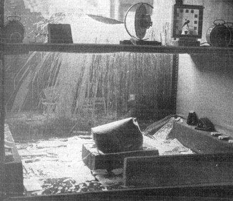 Enige Leidse N.S.B.-ers hebben een aanslag gepleegd op de horlogewinkel van den Duits-Joodsen emigrant L. Katz. De etalagekast werd geheel verwoest. In het midden de grote verfpot die met verf en kalk gevuld was en door het venster naar binnen werd gesmeten. Vijf N.S.B.-ers werden aangehouden. De toegebrachte schade bedraagt minstens ƒ 600. -.