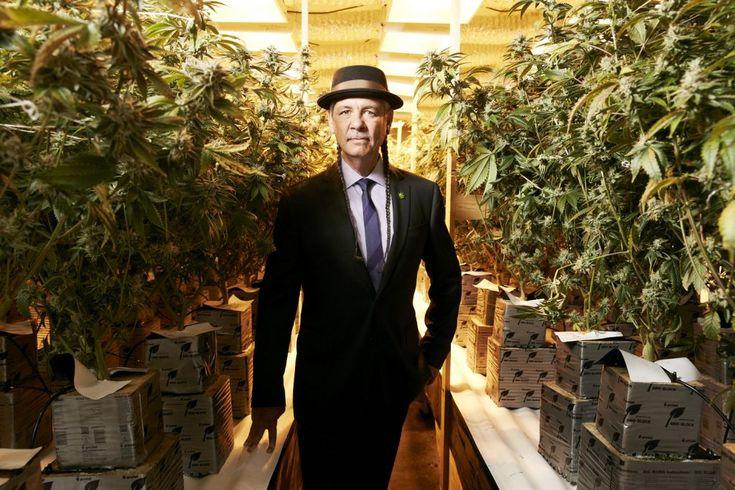 Landmark Cannabis Court Battle: Harborside Health Center Takes on IRS and Revenue Code 280E