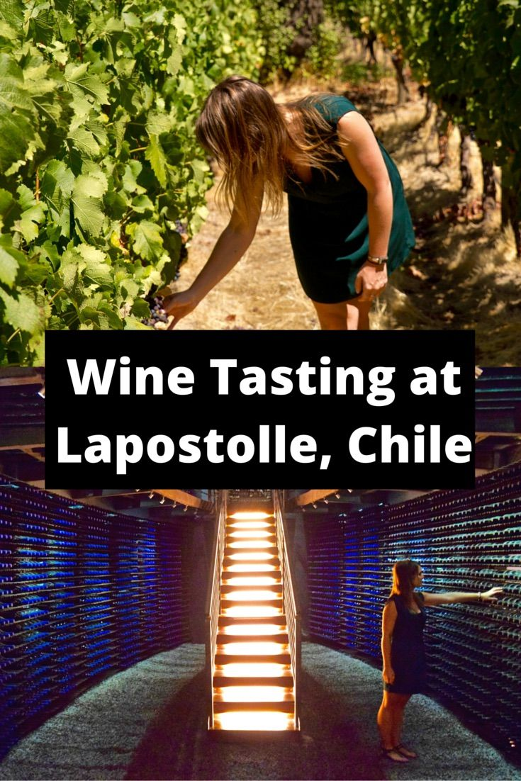 Wine Tasting At Lapostolle. You can't visit Chile without going wine tasting in the Colchagua Valley. I headed to top winery Lapostolle, for a special lunch and wine tasting. http://www.wanderlustchloe.com/2016/05/top-places-to-go-wine-tasting-in-the-colchagua-valley-lapostolle.html