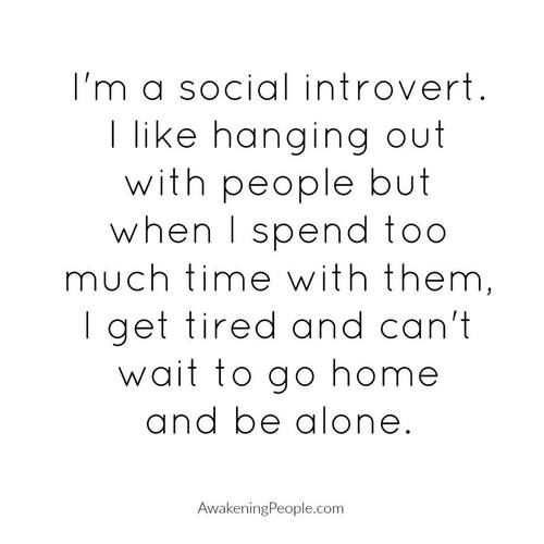 introvert, psychology, and quotes image