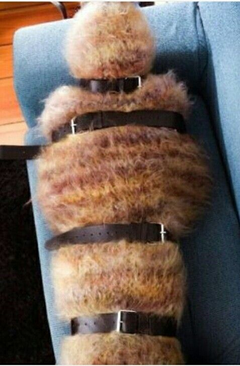 Wool mummy all snug and. Warm.  Woolfreaks photostream.