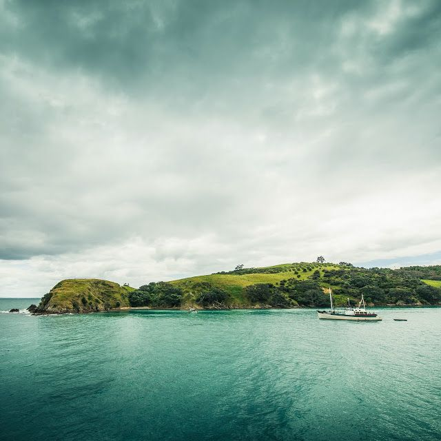 New Zealand Landscape, Waiheke Island