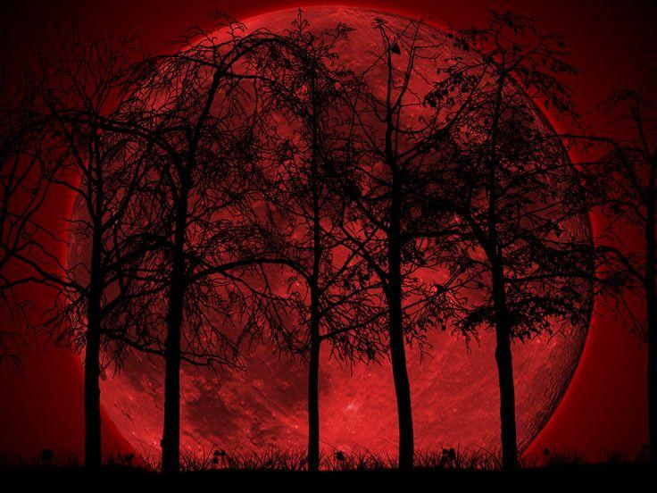 Full Moon Swamp - Bing Images
