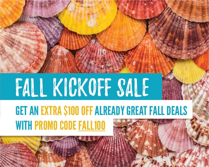 FALL KICKOFF SALE! | SEPTEMBER 16-24, 2017 Between now and September 24, get an extra $100 off your fall getaway with promo code FALL100! | Outer Banks Vacation Rentals on Hatteras Island - Outer Beaches Realty