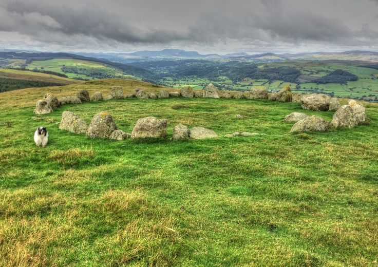 Moel Ty Uchaf -Stone circle. Loads of history with burial cists and triple ring cairn further on our walk. The area around Llandrillo, on the western side of the Berwyns, has been a focus for human activity from prehistoric times to the present day.