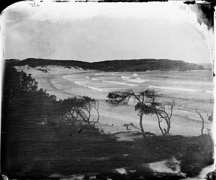 Bondi Beach 1870-1875 American & Australasian Photographic Company